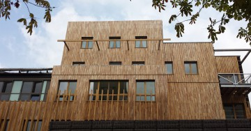 Robinia Cladding (false acacia)