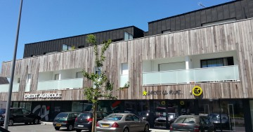 Thermo Poplar cladding