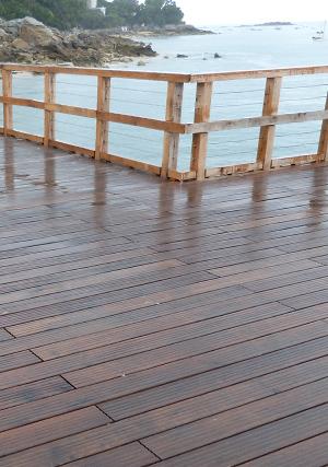 pontons et passerelles en bois durable